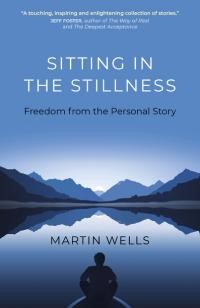 Martin Wells Book Cover