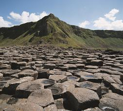 RCPsych-in-N-Ireland-Giants-causeway
