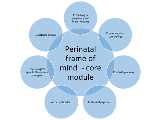 Infographic of the perinatal core module